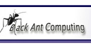 Black Ant Computing